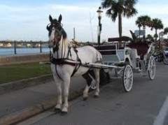 St Augustine Carriages